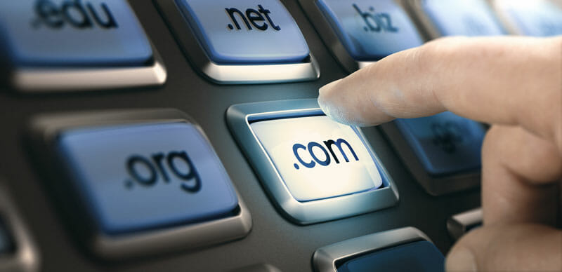 Com Net and Org Domains